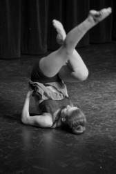 apa annual show 2017-03-24 (281)