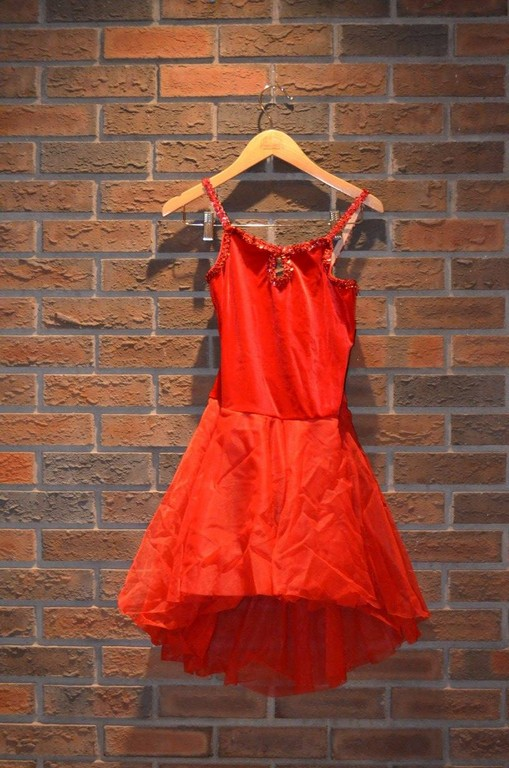 For Rent Item 027. Red ballet tutu with velour top; size: intermediate. There are three of these costumes.