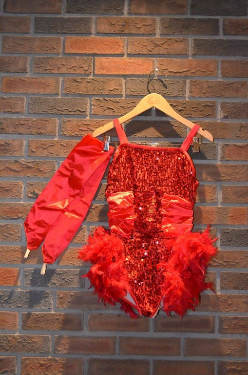 For Rent Item 029. Red leotard with sequin top and shorts, feather bottom, includes long arm gloves.
