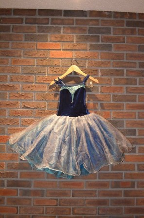 For Rent Item 030. Blue velvet top with blue and silver tutu; ballet; size: intermediate.