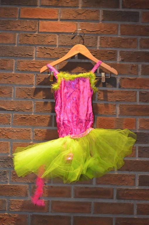 For Rent Item 039. Pink body suit with leopard print, feathery trim, green tulle skirt; size: junior.