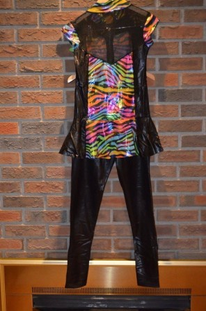 For Rent Item 045. Pleather pants/leggings with rainbow zebra and black top, mesh on upper area; jazz; size: Senior.